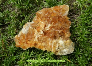 Golden Selenite