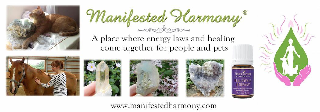 Universal Laws Archives - Manifested Harmony