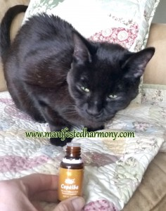 Lucy and Copaiba